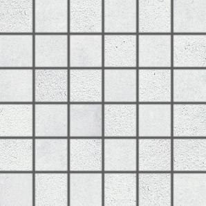 DDM06660