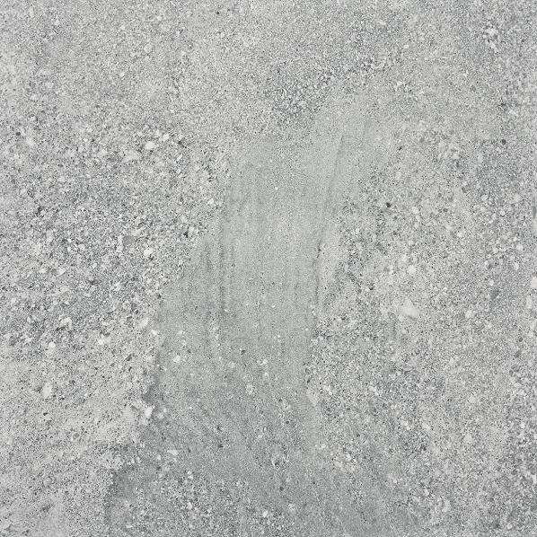 DAP63667